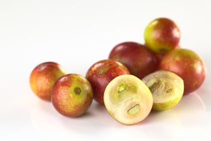 Camu Camu Früchte auf weißem Grund