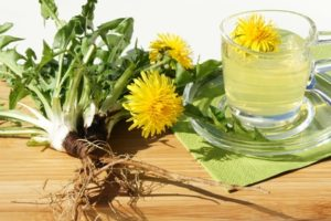 Löwenzahn Tee mit Blüten