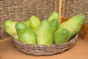 Graviola Frucht im Korb