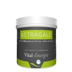 Astragalus kaufen Vital Energie