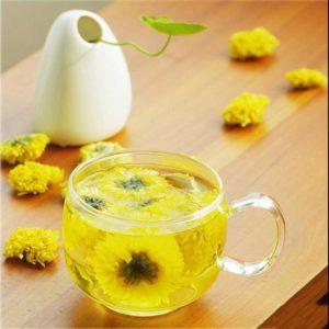 Chrysanthemen Tee kaufen