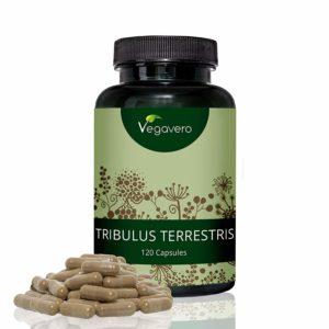Tribulus terrestris online kaufen